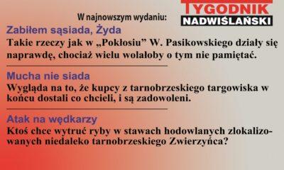 reklama-tv-7