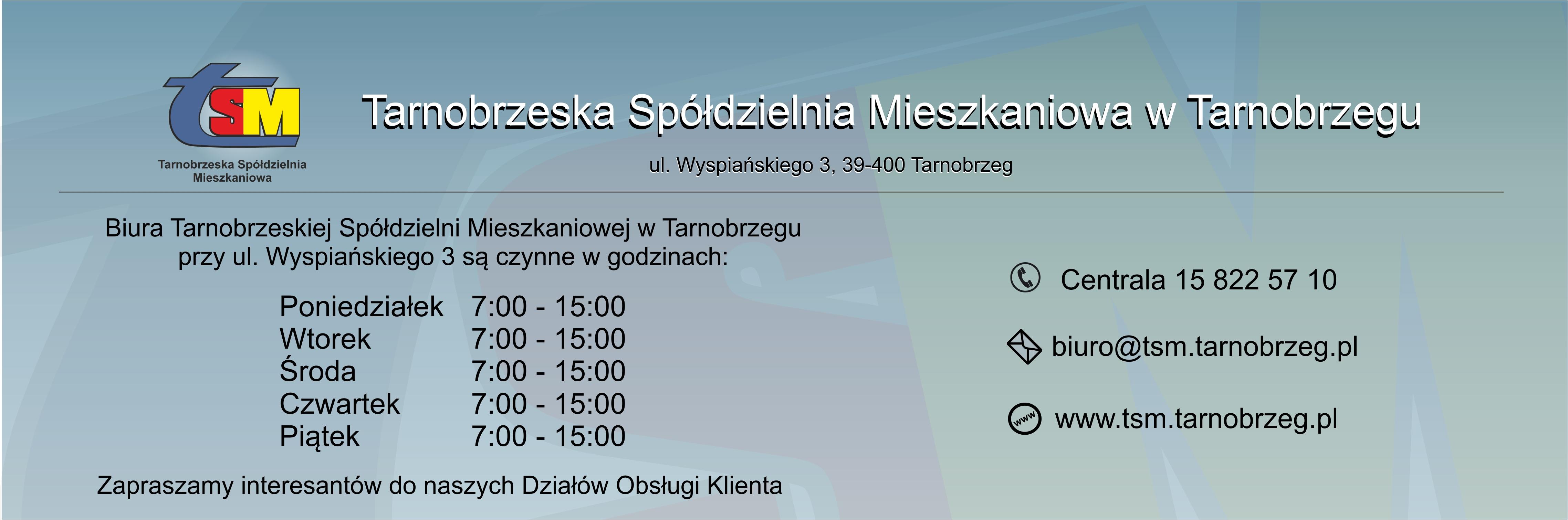 TSM reklama strona TVL