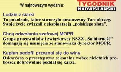 strona_internet